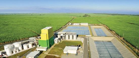 производство биоэтанола