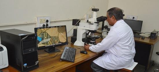 наука петрография